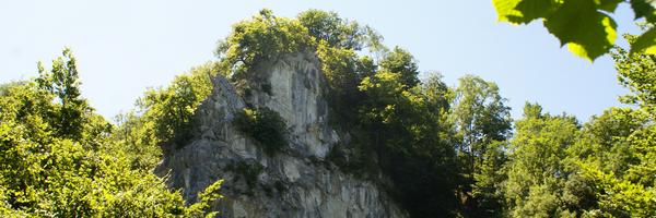Ravin d' Urrio